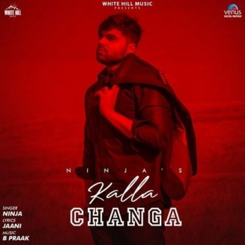 download Kalla Changa Ninja mp3 song ringtone, Kalla Changa Ninja full album download