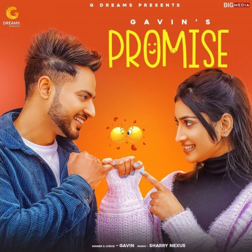 download Promise Gavin mp3 song ringtone, Promise Gavin full album download