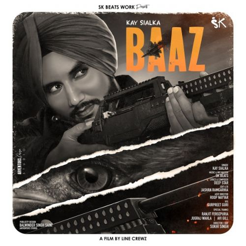 download Baaz Kay Sialka mp3 song ringtone, Baaz Kay Sialka full album download